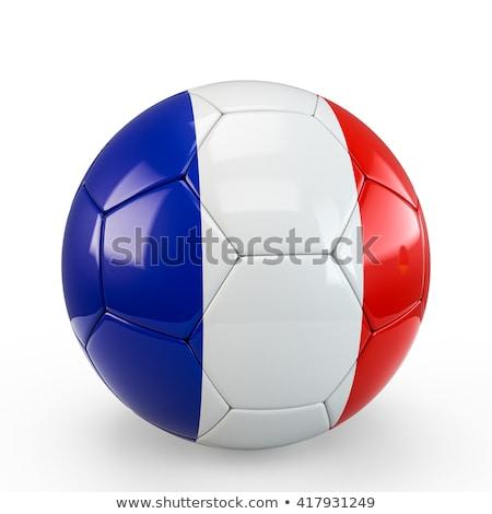 futball · gól · futballabda · net · 3d · illusztráció - stock fotó © ssuaphoto