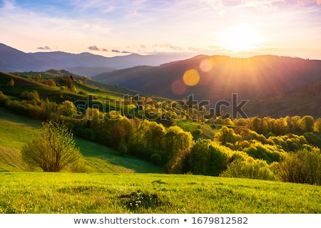 Idyllique rural paysages distant traditionnel roumain Photo stock © photosebia