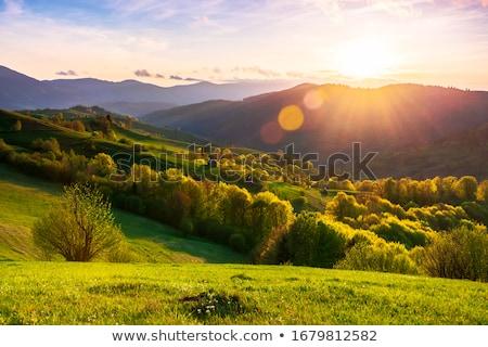 roemeense · landelijk · landschap · pittoreske · dorp - stockfoto © photosebia