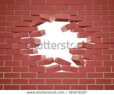 Innovatie witte muur doodle iconen rond Stockfoto © tashatuvango