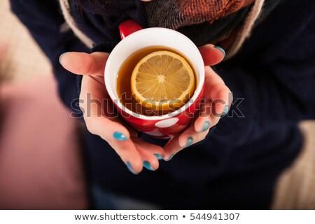Hot napój zimno przepiękny młodych brunetka Zdjęcia stock © lithian
