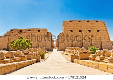 ram headed sphinxes egypt temple of karnak stock photo © freeprod