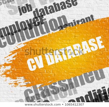 Cv base de datos blanco negocios educación pared de ladrillo Foto stock © tashatuvango