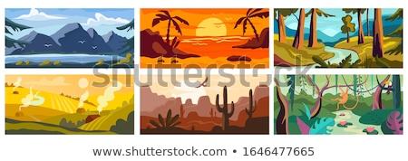 Piękna wygaśnięcia staw pustyni scena ilustracja Zdjęcia stock © bluering