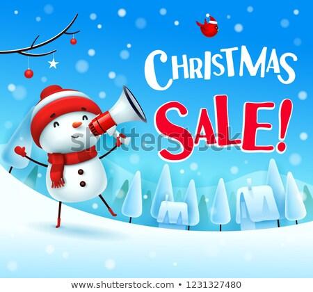 Natal venda alegre boneco de neve megafone neve Foto stock © ori-artiste
