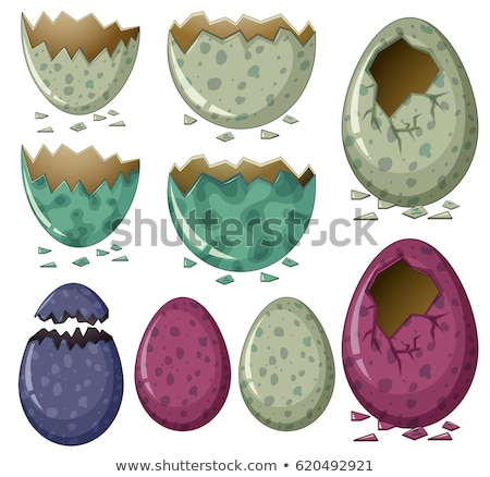 different patterns of dinosaur eggs stock photo © colematt