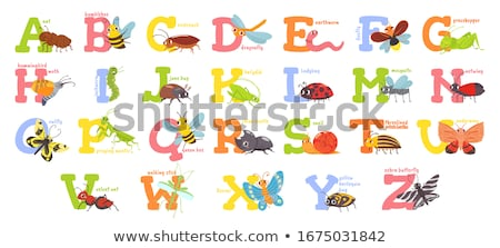 Cartoon Little Bug Text Stock photo © cthoman