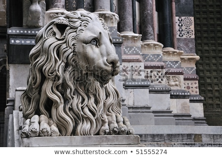 Lion of the San Lorenzo Cathedral in Genoa, Italy Stock photo © boggy