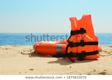 Foto d'archivio: Lifebuoy On The Sandy Beach Near The Sea
