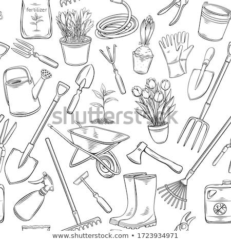 Kürek tırmık bahçe araçları yalıtılmış vektör Stok fotoğraf © robuart