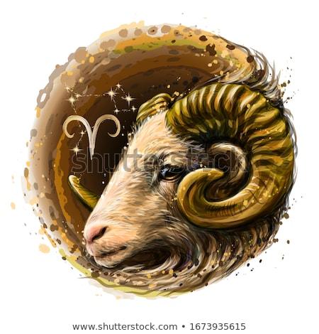 Sticker of Aries Zodiac Sign Stock photo © cidepix