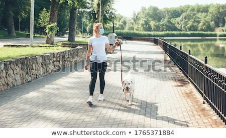 young woman walking the dog Stock photo © nito