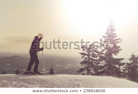 Skieur athlète neige montagnes sport ciel Photo stock © liolle