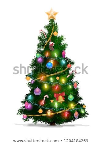 Natale · inverno · vacanze · preparazione · decorazione · vettore - foto d'archivio © robuart