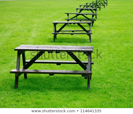 Row of empty outdoor tables and benches Stock photo © Giulio_Fornasar
