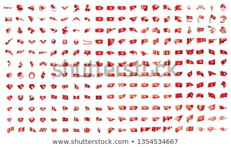 Grande coleção vetor bandeiras Tunísia mundo Foto stock © butenkow