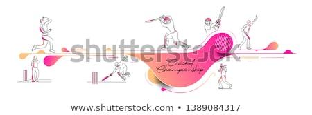Krykieta sportu zapowiedź ulotki banner wektora Zdjęcia stock © pikepicture