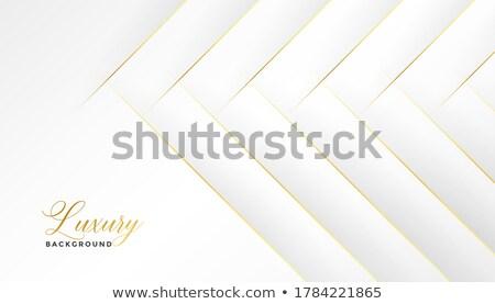 Klassz fehér átló arany vonalak terv Stock fotó © SArts