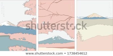 Fuji çöl boyalı tepeler Oregon doğa Stok fotoğraf © craig