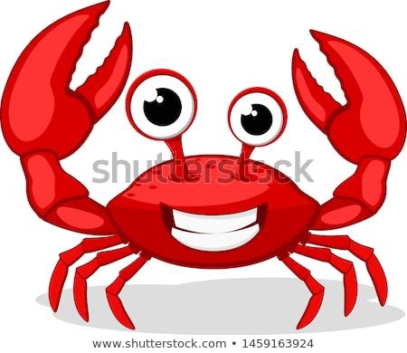 vida · caranguejo · mão · fundo · areia · pernas - foto stock © leeser