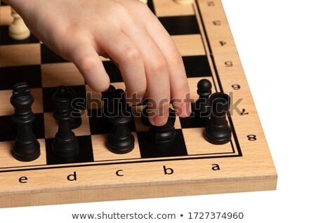 küçük · kız · oynama · satranç · tek · başına · çocuk · eğitim - stok fotoğraf © photography33