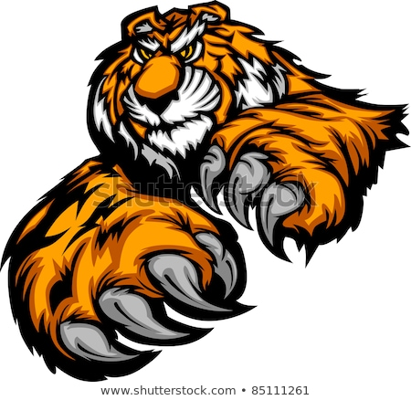 Stock photo: Tiger Mascot Body with Paws and Claws