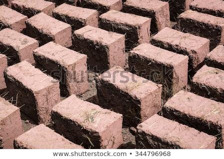 Rows of Adobe Bricks Drying in the Sun Stock photo © rhamm