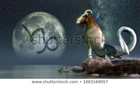 goat 21 stock photo © lianem