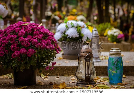 symbolic tombstones  Stock photo © kornienko