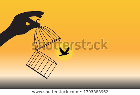 open birdcage with free birds, vector Stock photo © beaubelle