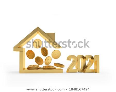 house icon isolated on white background stock photo © inxti