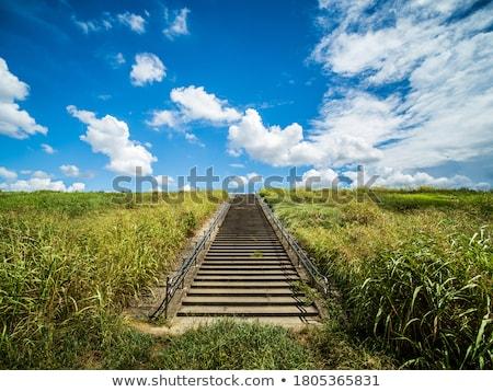 klatka · schodowa · nieba · schody · słońce · Błękitne · niebo · chmury - zdjęcia stock © lightsource