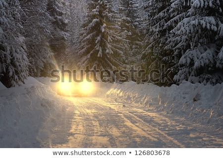 Winter night with snow and car with headlights on. Stock photo © kyolshin