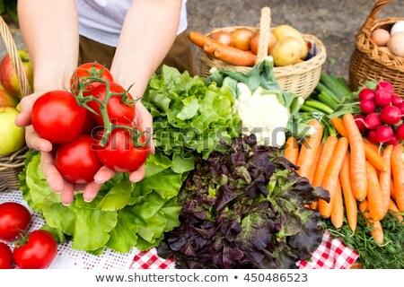 boer · salade · Grieks · dorp · land · sla - stockfoto © doupix