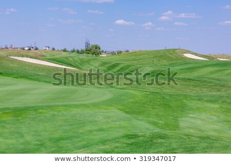 Stok fotoğraf: Perfect Wavy Ground With Green Grass On A Golf Field