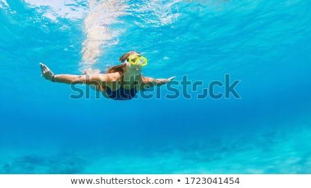 úszómedence · Karib · üdülőhely · egzotikus · kert · égbolt - stock fotó © kurhan