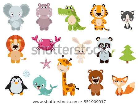 set of cartoon animal icons stock photo © adrian_n
