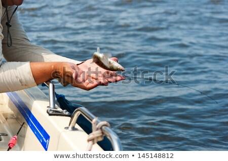 Balık el güneş doğa teknoloji Metal Stok fotoğraf © artlens