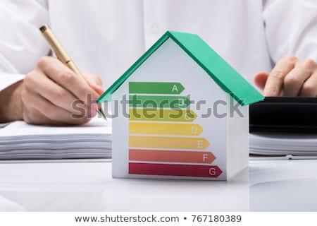 Maisons efficacité énergétique graphique environnement 3d illustration maison Photo stock © make