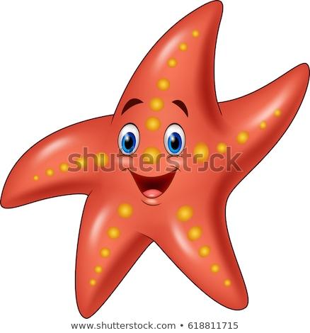 starfish cartoon Stock photo © aminmario11