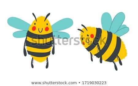 set of busy wasps isolated stock photo © anterovium