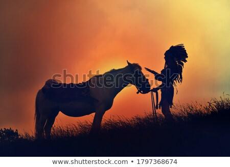 indian chief Stock photo © mayboro