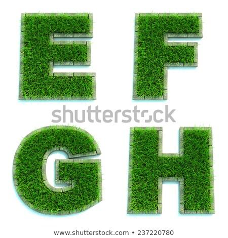 letters e f g h as lawn   set of 3d stock photo © tashatuvango