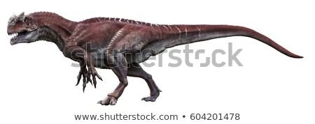 allosaurus dinosaur - 3d render Stock photo © mariephoto