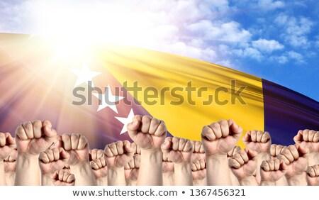 personas · bandera · Bosnia · Herzegovina · aislado · blanco · multitud - foto stock © stevanovicigor
