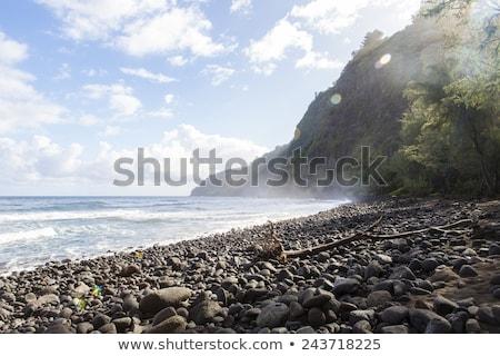 beautiful black stone beach - waipio valley, hawaii Stock photo © jarin13