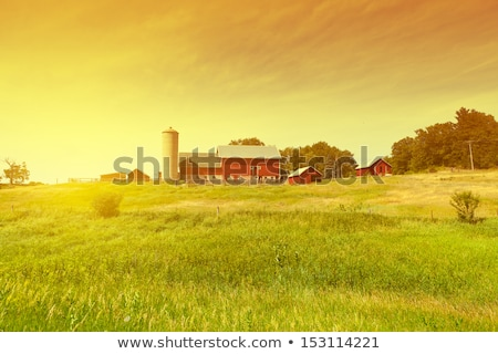 traditional red farm and silos stock photo © aetb