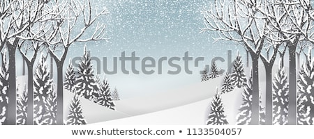 Winter frame for the congratulations. Natural frosty pattern     Stock photo © Valeriy