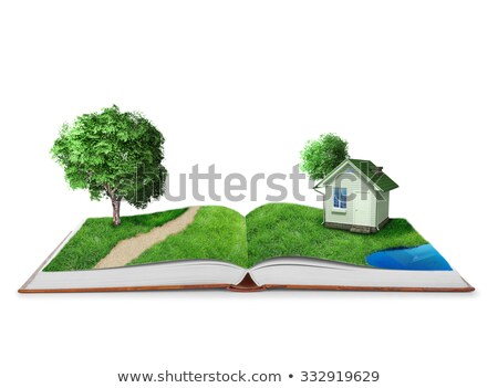 house on open book with grass stock photo © cherezoff