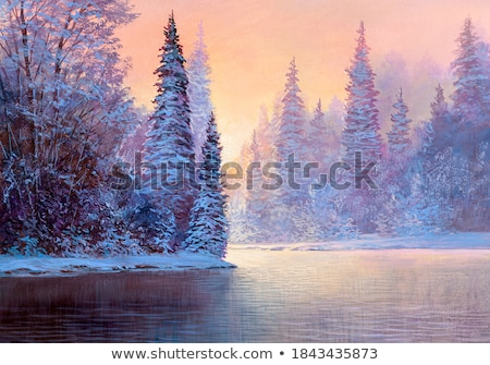 Evening on the winter river Stock photo © ondrej83